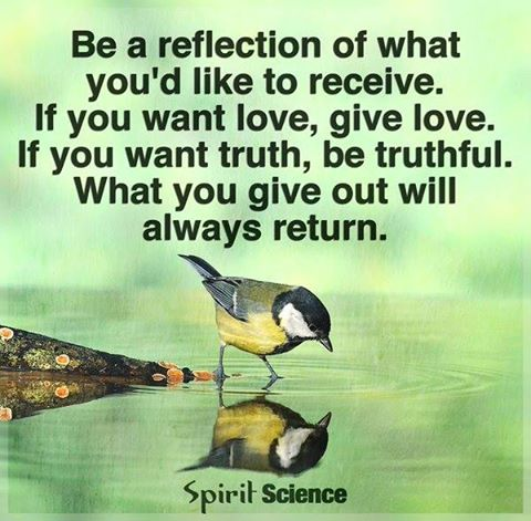 Be a reflection of life