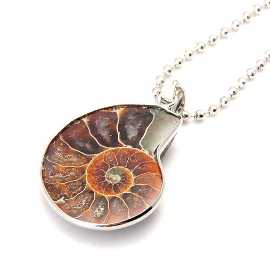 JoyaGift Charm Handmade Natural Conch Fossil Ammonite By Silver Wrapped Pendant Necklace